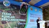 Orman Bakanlığı'ndan Bursa'ya 210 Milyonluk Yatırım